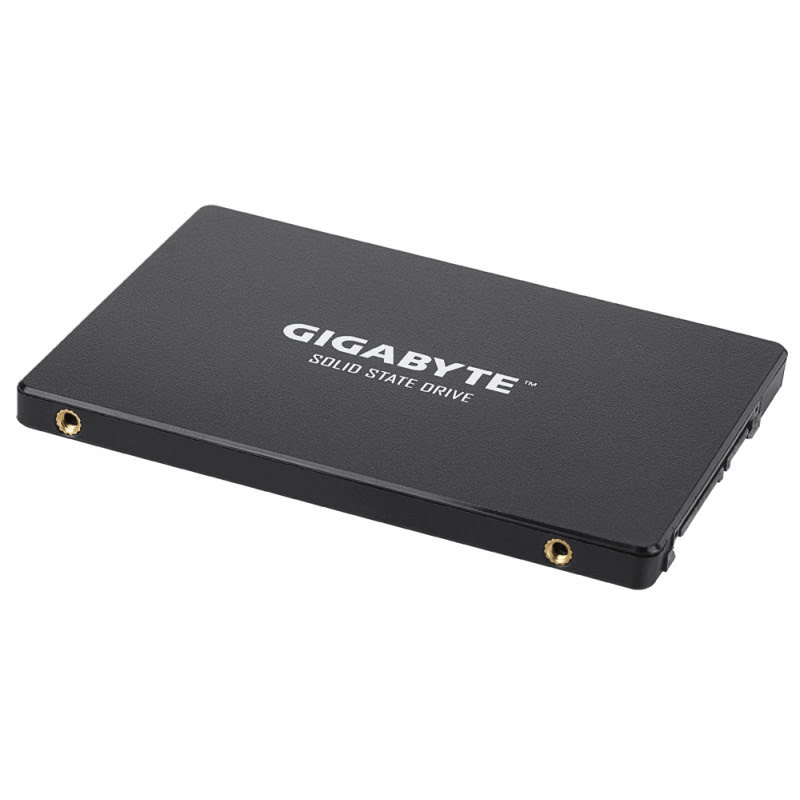 1To SATA III - GP-GSTFS31100TNTD (GPSS1S100-00-G) - Achat / Vente Disque SSD sur Picata.fr - 1